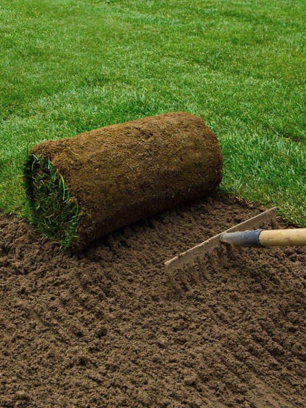 Reti produzione tappeti erbosi