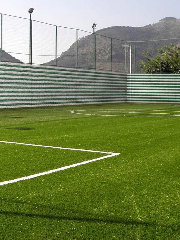 Спорт и свободное время