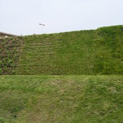 Terre rinforzate a facciata rinverdita Sistema Tenax Rivel
