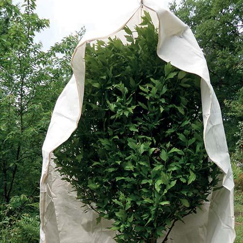 Tessuto protettivo per piante con zip e lacci