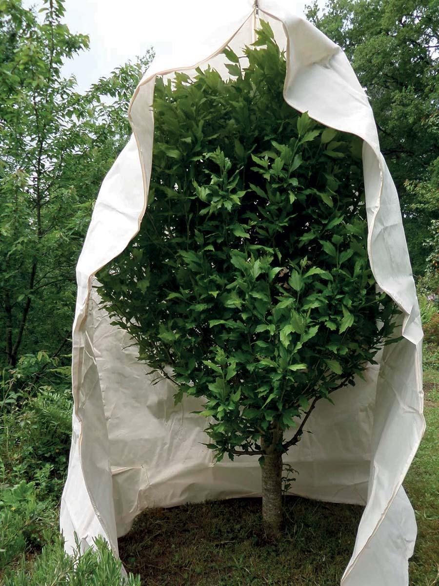 Tessuto protettivo invernale per piante