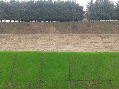 Slope protection with pre-sowed geomat Tenax Multimat P