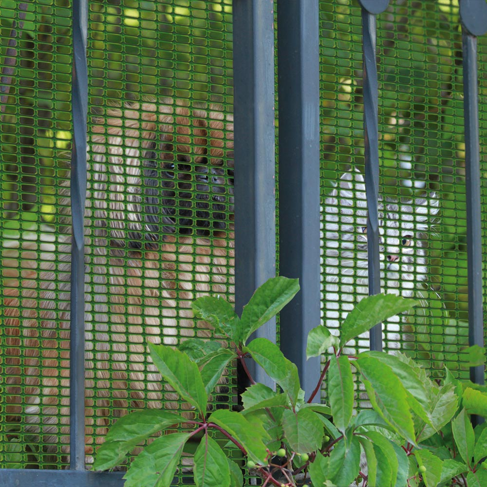 Rete Per Balconi Bambini recinzione per cani, rete per animali. tenax