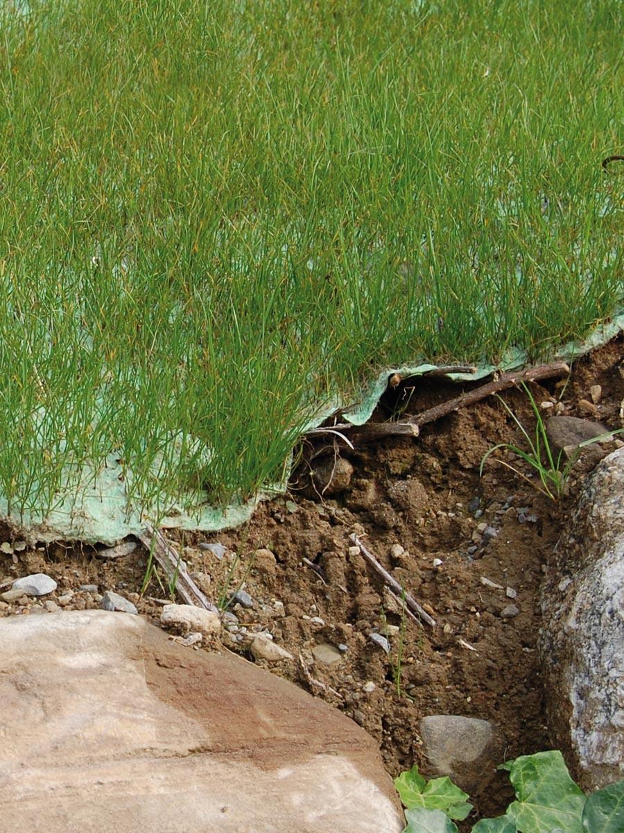 Feltro vegetativo preseminato Tenax FVP