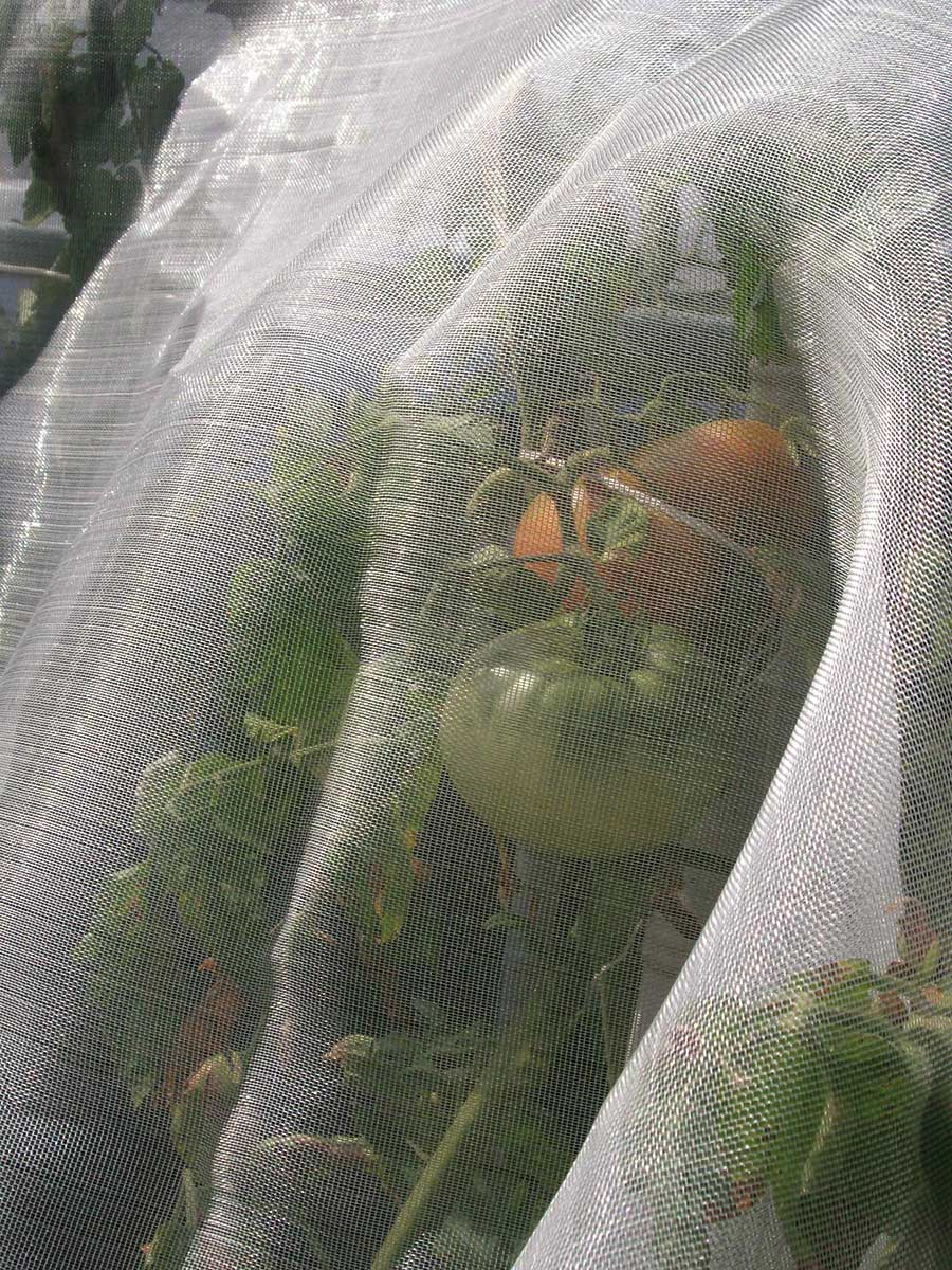 Cover portrait della rete anti-insetti MICROFENDER