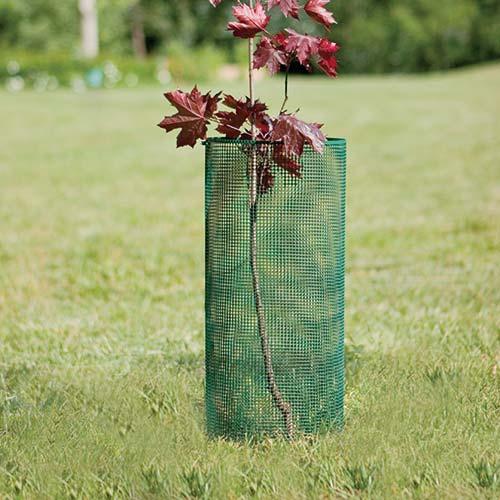 Box Launch rete per giovani piante contro piccoli animali QUADRA 05 TENAX