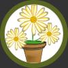 per piante in vaso