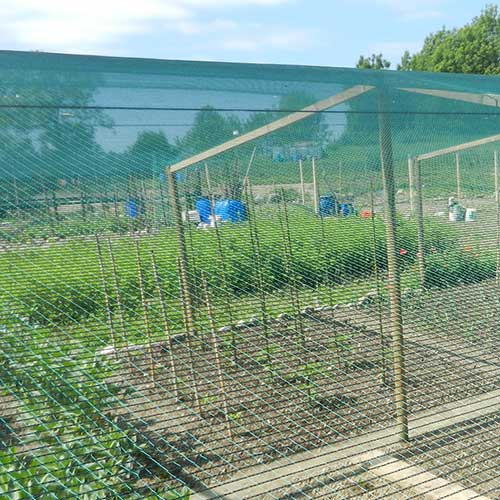 Crop Protection Vegetable Garden Tenax