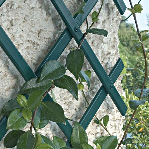 Traliccio estensibile decorativo TENAX TREPLAS