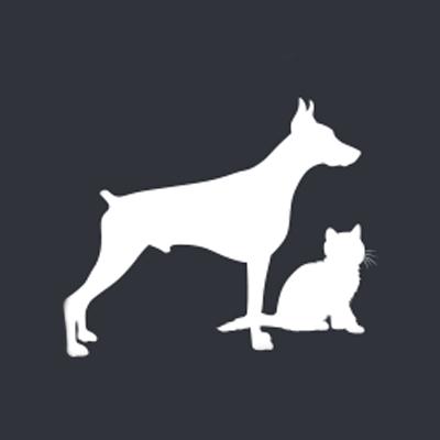 Ideali-per-animali-domestici-irish-mat