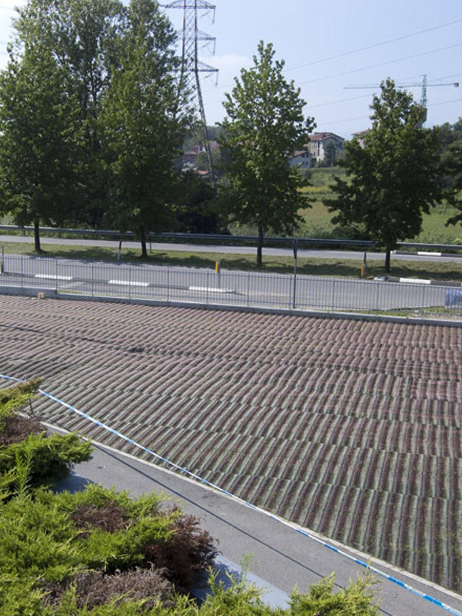 Rete rinforzo prati carrabili GP FLEX - area parcheggio