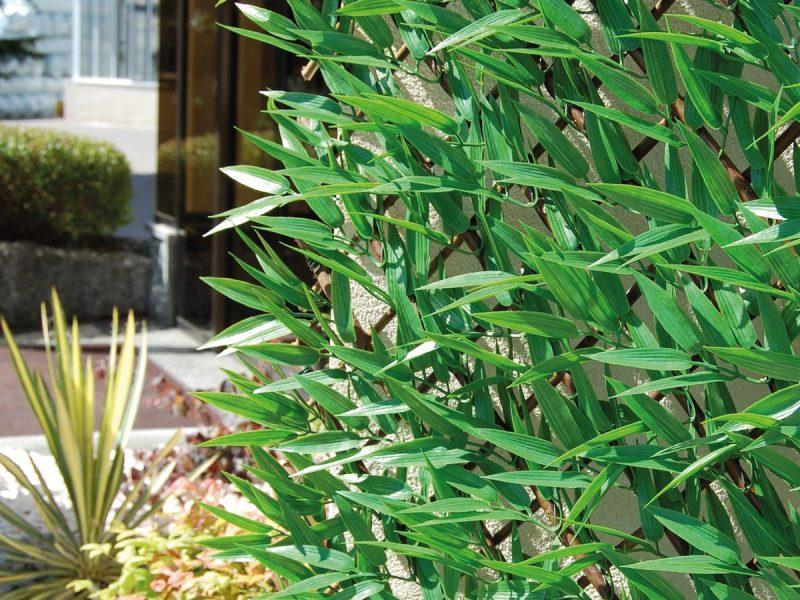 Schermature-decorative-siepi-artificiali-divy-3d-x-tens-bamboo