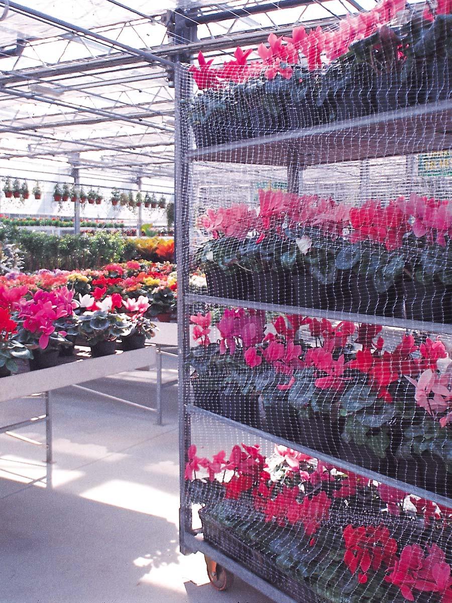Rete-pallet-piante-fiori-A3-A9